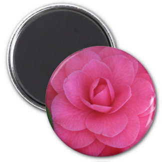 Pink Camelia 2 Inch Round Magnet