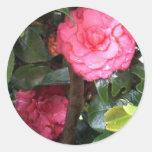 Pink Camelia de Costa Rica Round Sticker
