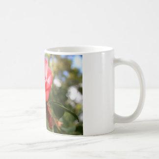 Pink Camelia Flower Mug