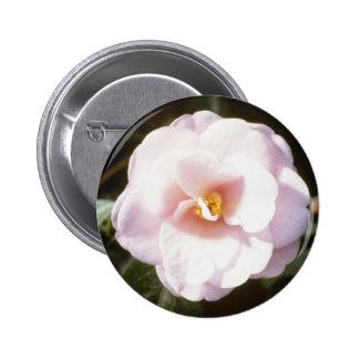 Pink Camelia Japonica 'Fleur De Pecher' (Japanese Pinback Button