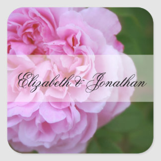 Pink Camellia and Ribbon Wedding Square Sticker