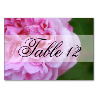 Pink Camellia and Ribbon Wedding Table Cards
