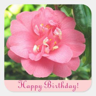 Pink Camellia Happy Birthday Sticker
