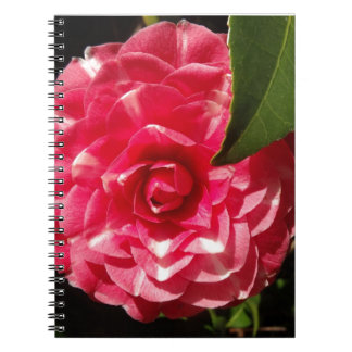 pink camellia notebook