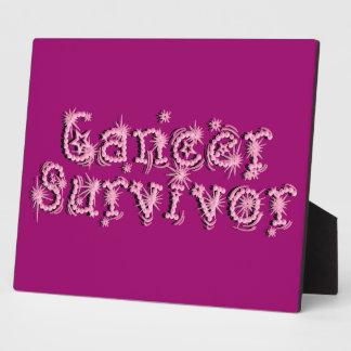 Pink Cancer Survivor Fireworks Plaque Decor