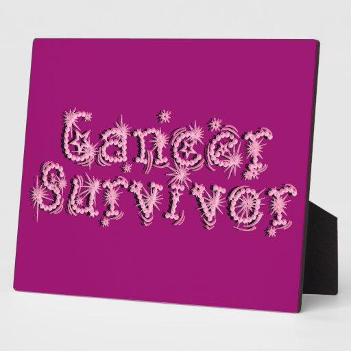 Pink Cancer Survivor Fireworks Plaque Decor Zazzle