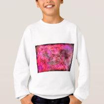 Pink Canvas Sweatshirt