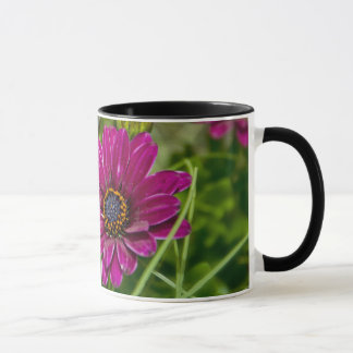 Pink Cape Daisy Flower coffee mug