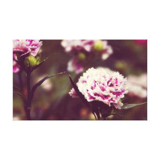 Pink Carnation flowers vintage lomo Canvas Print