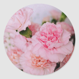 pink carnation flowers vintage style photography classic round sticker