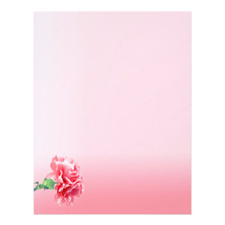 Pink carnation on a pink gradient letterhead