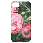 Pink Carnations iPhone Case Cover For iPhone 5C