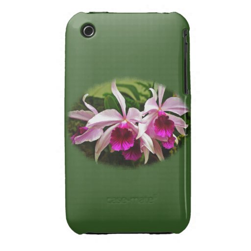 Pink Cattleya Cluster of Orchids iPhone 3 Cover