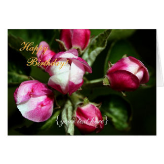 Pink Cherry Blossom - Happy Birthday Greeting Card