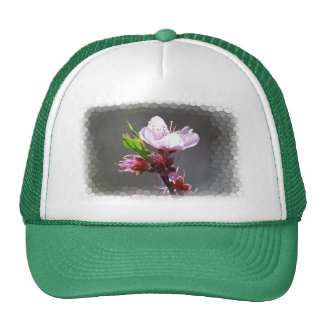 Pink Cherry Blossom hat