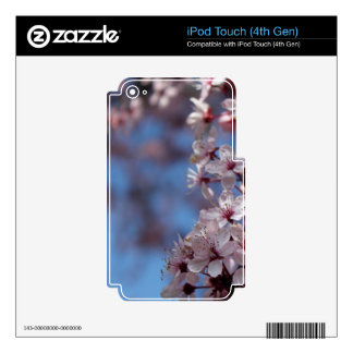 pink cherry blossom in blue sky skin for iPod touch 4G