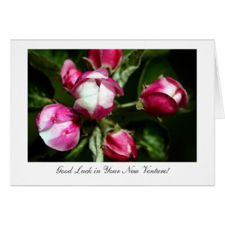 Pink Cherry Blossom - Luck With Your New Venture Card