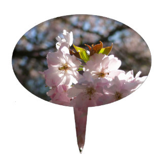Pink cherry blossoms cake topper