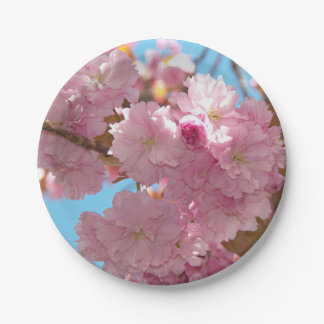 Pink Cherry Blossoms Floral Paper Plate