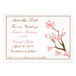 Pink Cherry Blossoms Save the Date Custom Announcement