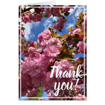 Pink Cherry Blossoms Thank You Card