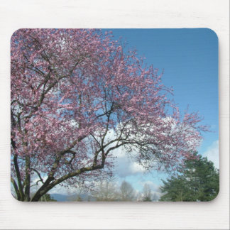 Pink cherry tree and blue sky, white clouds mouse pad