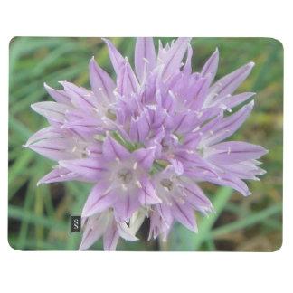 Pink Chive Flowers Allium Schoenoprasum Journal
