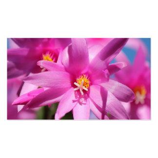 Pink Christmas Cactus Schlumbergera Flower Blossom Business Card