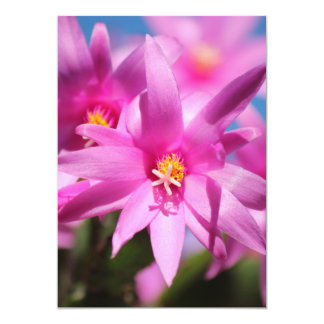 Pink Christmas Cactus Schlumbergera Flower Blossom 5x7 Paper Invitation Card