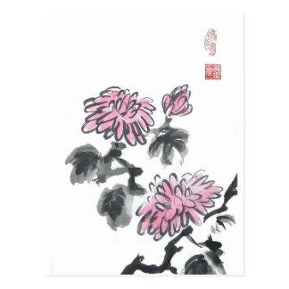 Pink Chrysanthemum Flowers Postcard