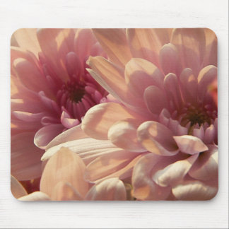 Pink Chrysanthemum Mousepad