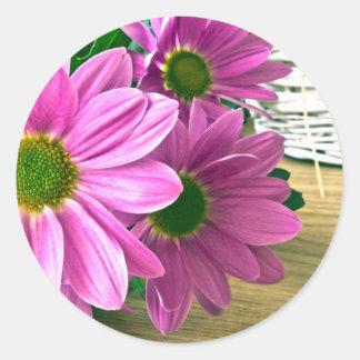 Pink chrysanthemum round sticker