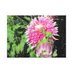 Pink Chrysanthemum Wrapped Canvas Gallery Wrap Canvas