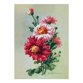 Pink Chrysanthemums by Catherine Klein Poster
