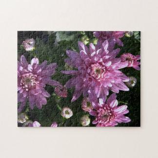 Pink Chrysanthemums Puzzles