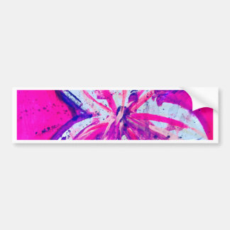 pink-city bumper sticker
