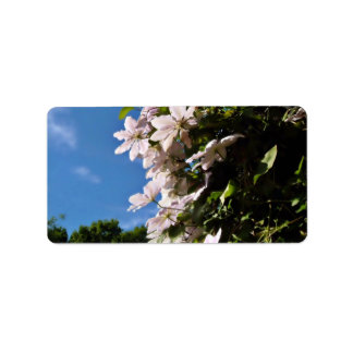 Pink clematis blossoming on a sunny day personalized address labels