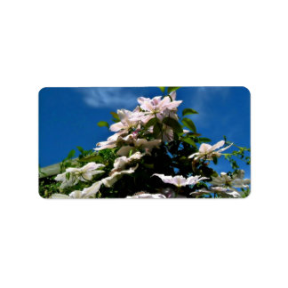 Pink clematis blossoming on a sunny day custom address label