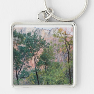 Pink Cliffs at Zion Silver-Colored Square Keychain