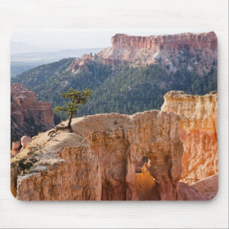 Pink Cliffs Mouse Pad