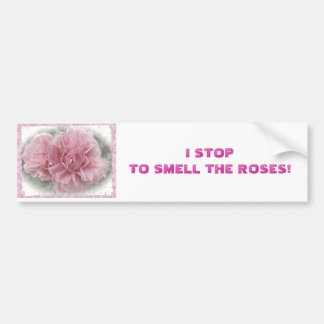 Pink Climbing Rose Blossoms Bumper Sticker
