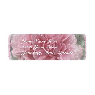 Pink Climbing Rose Blossoms Custom Return Address Labels