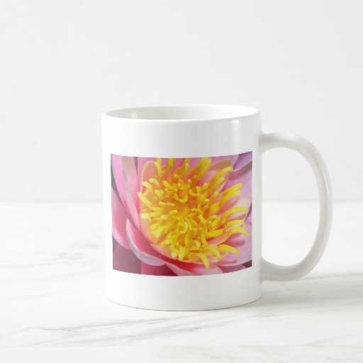 Pink Close up flowers Classic White Coffee Mug