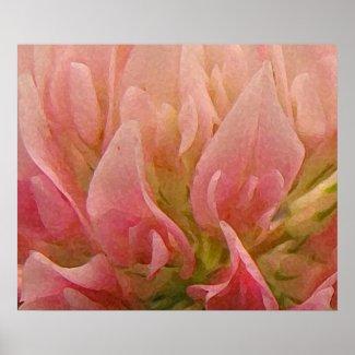 Pink Clover Print