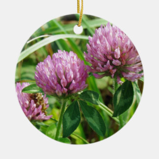 Pink Clover Wildflower - Trifolium pratense Ceramic Ornament