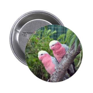 Pink Cockatoos Pinback Buttons