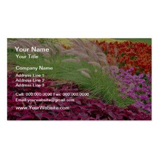 Pink Coleus and pampas grass, Niagara Parks, Ontar Business Card Templates