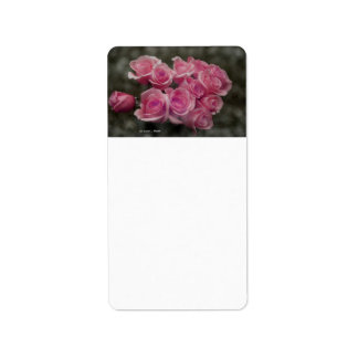 pink colorized rose bouquet Spotted background Address Label