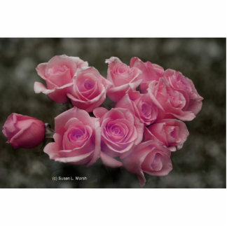 pink colorized rose bouquet Spotted background Photo Sculptures