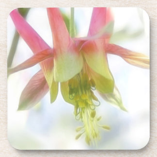 Pink Columbine Flower Drink Coaster